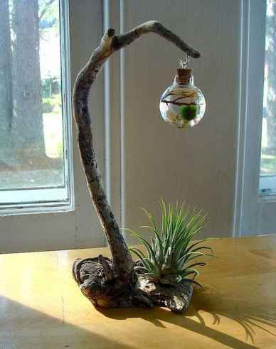 40 Easy To Try Hydroponic Gardening For Beginners Design Ideas And Remodel (40)