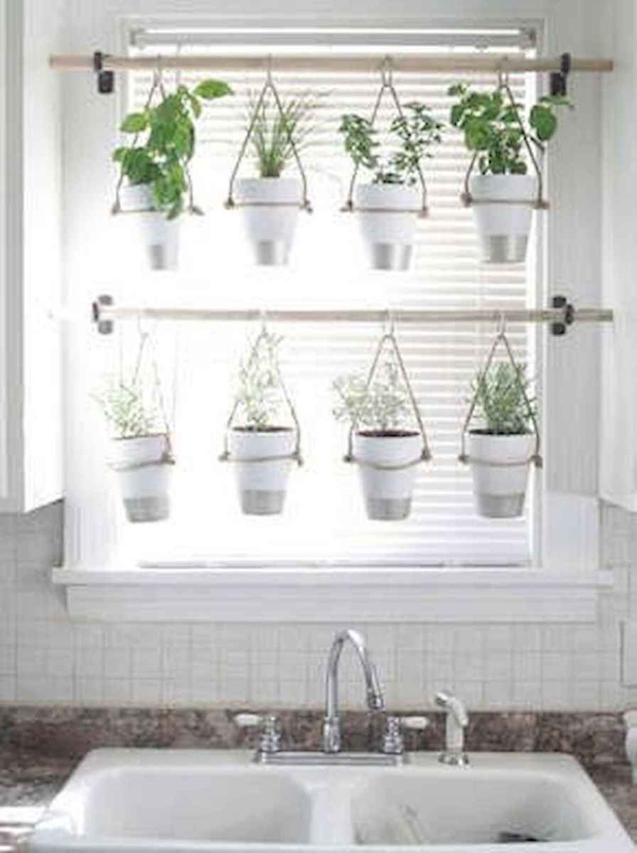 40 Easy To Try Hydroponic Gardening For Beginners Design Ideas And Remodel (8)