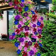 43 Creative DIY Garden Art Design Ideas And Remodel (28)