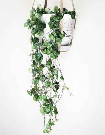 50 Amazing Vertical Garden Design Ideas And Remodel (32)