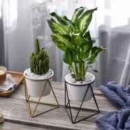 50 Best Indoor Garden For Apartment Design Ideas And Remodel (10)