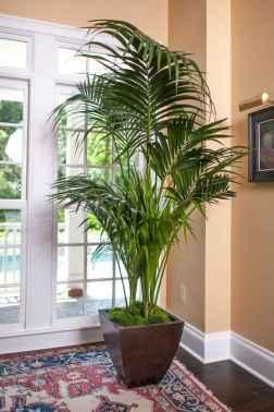 50 Best Indoor Garden For Apartment Design Ideas And Remodel (12)