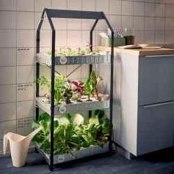 50 Best Indoor Garden For Apartment Design Ideas And Remodel (27)