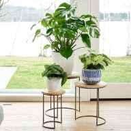50 Best Indoor Garden For Apartment Design Ideas And Remodel (31)