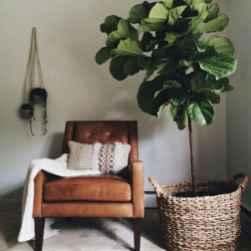 50 Best Indoor Garden For Apartment Design Ideas And Remodel (41)