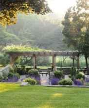 60 Beautiful Backyard Garden Design Ideas And Remodel (22)