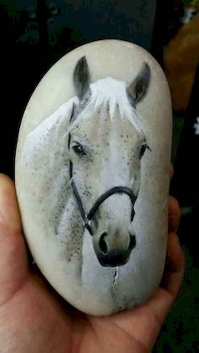 25 Suprising DIY Projects Painted Rocks Animals Horse for Summer Ideas (9)