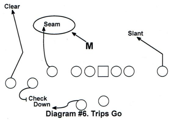 Diagram #6 RPO Game