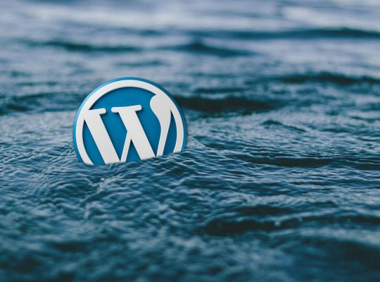 wordpress, plugins, astuces