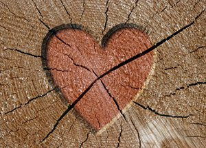in a marriage with a broken heart