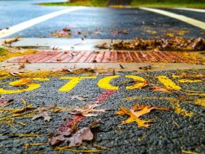 The Habit Poem - Stop