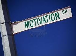Motivation and Drive