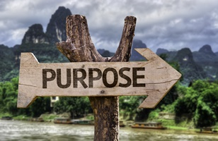 Understanding Your Why, Purpose and Values