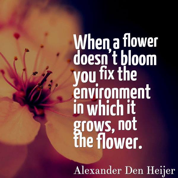Image result for you don't change the flower you change the environment