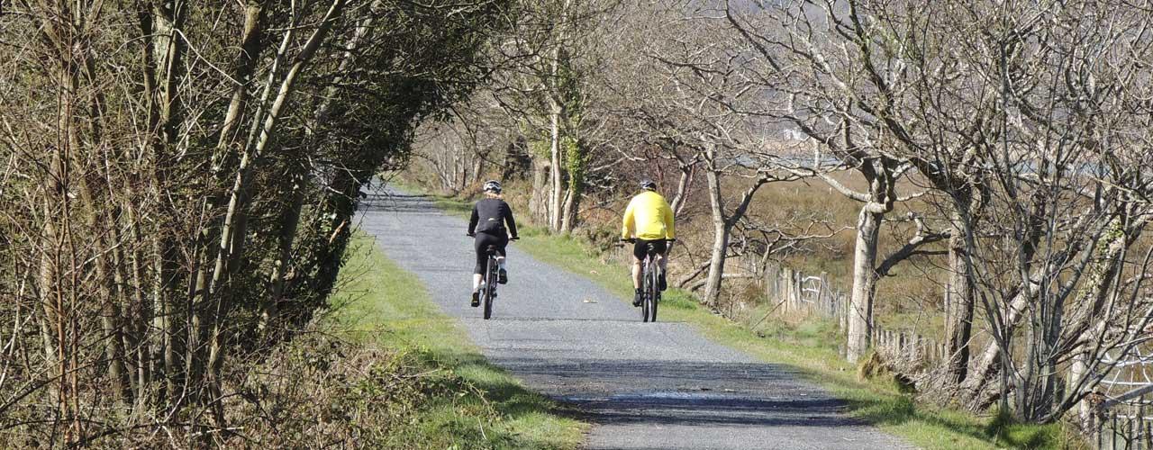 Cycling on The Mawddach Trail
