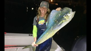 Jackie Farber caught this dolphin on a bottom drop in 130ft off Palm Beach inlet. Hit triple hooked sardine on a 15ft Fluoro leader and 2oz weight on the way down