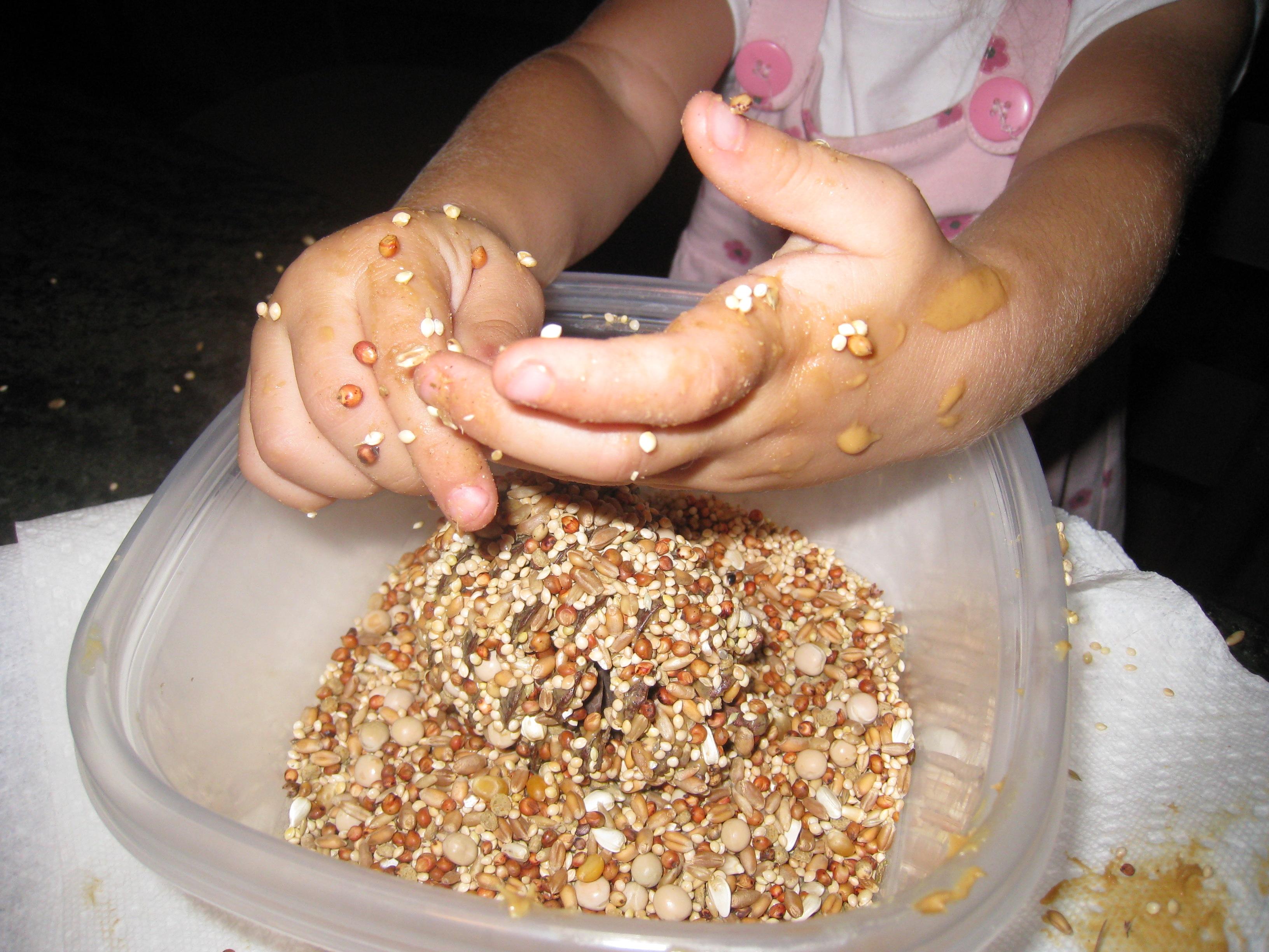 Rolling in bird seed sticky fun!