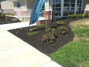 Flower bed landscaping