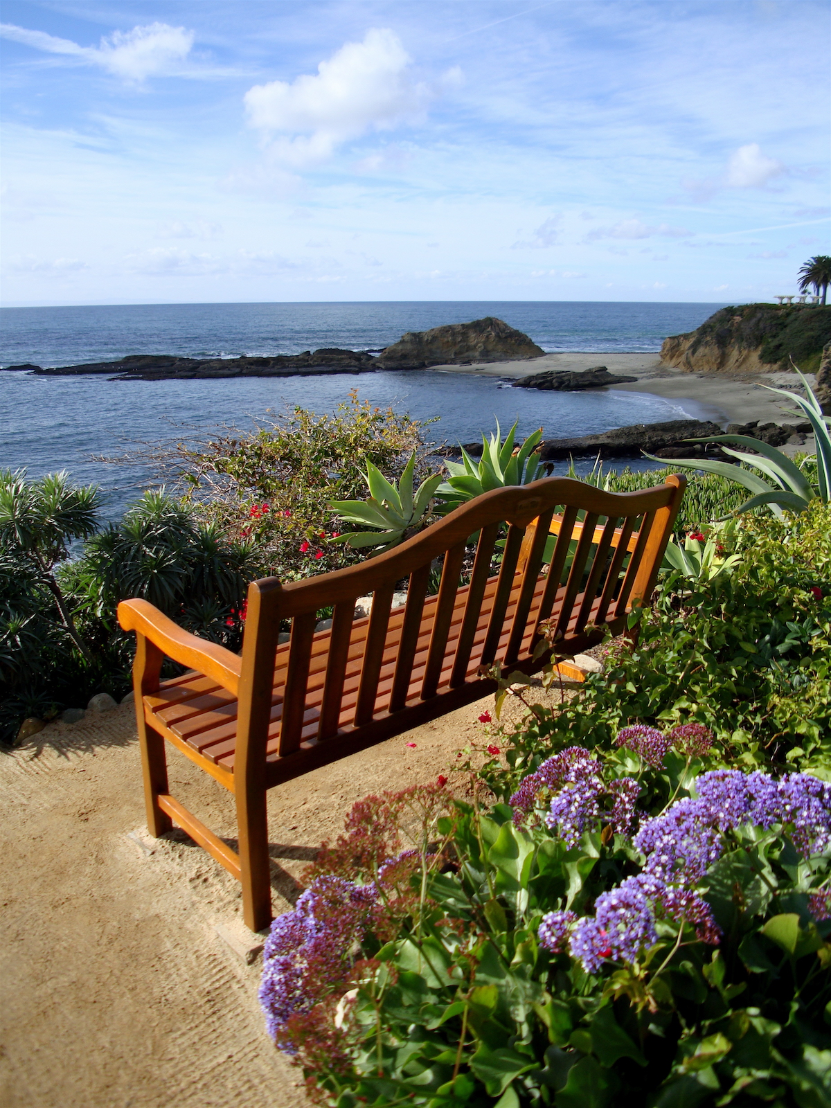 A bench on the edge of a cliff at the Montage Hotel in Laguna Beach