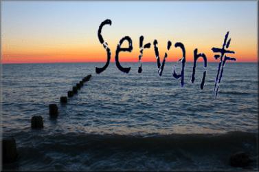 YOU'VE GOT TO SERVE SOMEBODY