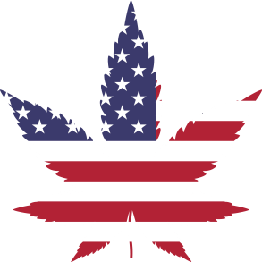 US Flag Cannabis seeds for Coastal Mary seeds