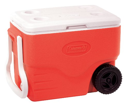Cooler on Wheels Image