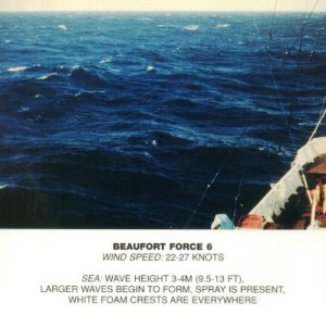 Beaufort_scale_6