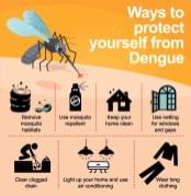 dengue 10