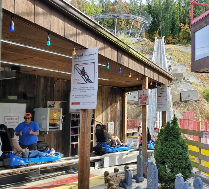 The Coaster Goats on the Roof - Loading Station - Mountain Coaster