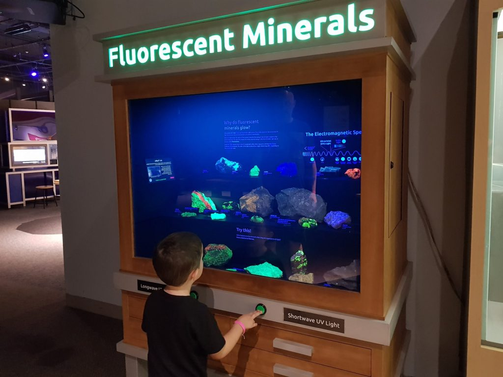 A child at a museum looking at a mineral display