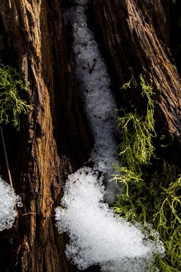 Lake Tahoe was a winter wonderland for us. Dawn Page/CoastsideSlacking