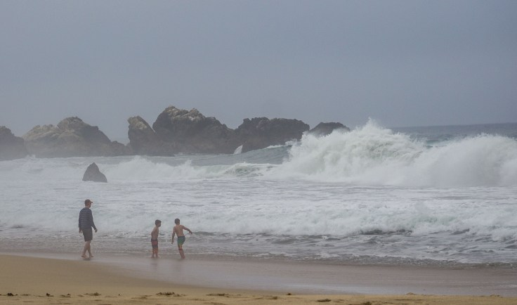 Dad puts an end to children wading near 12 ft waves at Garrapata State Beach. Dawn Page/CoastsideSlacking