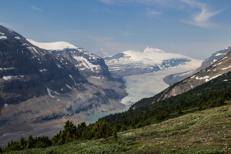 Saskatchewan Glacier from the Parker Ridge Trail. Dawn Page / CoastsideSlacking