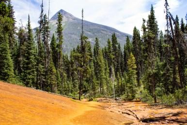 Vivid landscape at the Paint Pots of Kootenay National Park, BC, Canada. Dawn Page / CoastsideSlacking