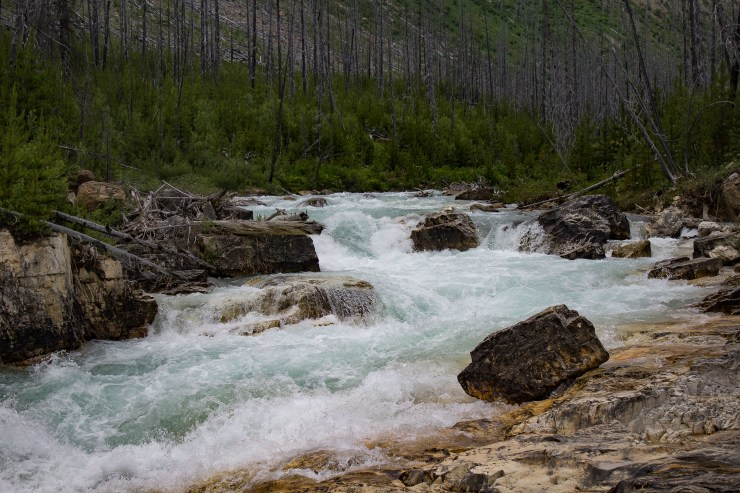 Tokumm Creek at the entrance of Marble Canyon in Kootenay National Park, BC, Canada. Dawn Page / CoastsideSlacking
