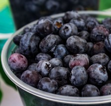 Blueberries from Rainbow Orchards at the Coastside Farmer's Market in Pacifica, CA. Dawn Page / CoastsideSlacking