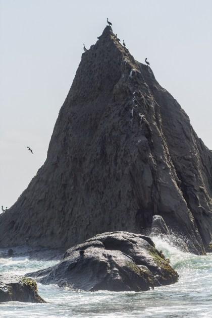 Martins Beach, near Half Moon Bay, California. Dawn Page / CoastsideSlacking