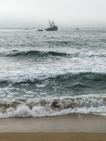 Trawlers get in on the action during the coastside feeding frenzies, this one at Montara Beach near Half Moon Bay. Dan Page / CoastsideSlacking