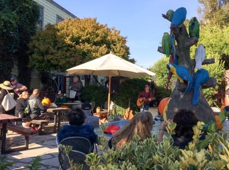 Local musicians entertain at the 2017 Half Moon Bay Pumpkin Festival. Dawn Page / CoastsideSlacking