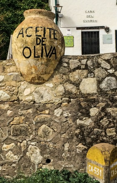 Molino el Vinculo has been pressing olive oil just outside of Zahara de la Sierra in Andalusia, Spain since 1755. Dawn Page / CoastsideSlacking