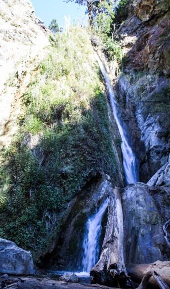 Limekiln State Park, Big Sur, California. Dawn Page / CoastsideSlacking