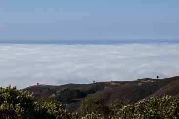 Montara Mountain. Dawn Page / CoastsideSlacking
