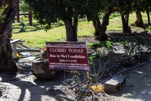 Forestiere Underground Gardens in Fresno, CA. Closed again! Dawn Page / CoastsideSlacking