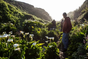 MontaraManDan at Calla Lily Valley, Big Sur, CA. Dawn Page/CoastsidesSlacking