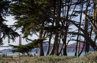 Golden Gate Bridge from Crissy Field Promenade. Dawn Page/CoastsideSlacking
