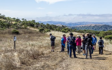 Contemplating a trailside installation at Djerassi. Dawn Page/Coastside Slacking