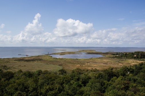 Currituck Sound from Currituck Beach Lighthouse. Dawn Page/CoastsideSlacking
