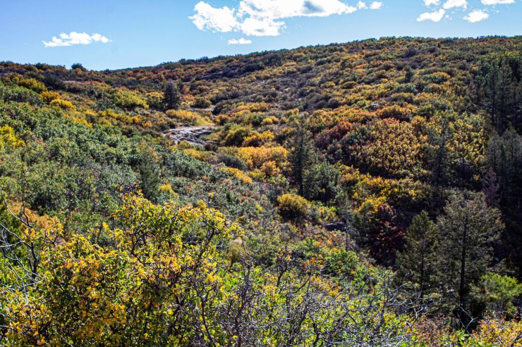 20190928 - black canyon-IMG_0360