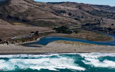 Salmon Creek, Sonoma Coast State Beach