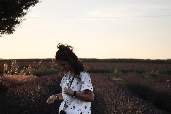 paca_valensole_lavender_fields_sunset_floriane_head_down